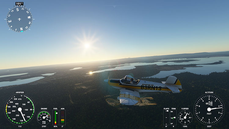 The Flight Simulator rendering of the world is visually pleasing.